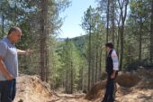 Pütürge Ormanları Göz Dolduruyor