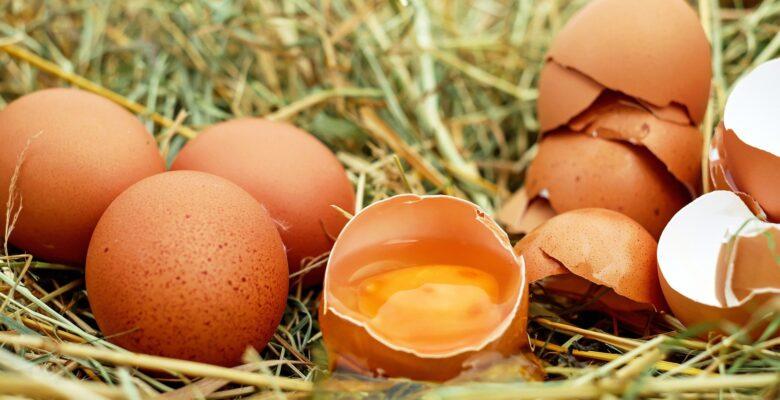 Market Torbasının Lideri; Yumurta
