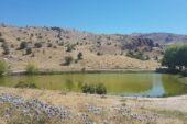 Dipsiz Göl'e Koruma Alanı Talebi